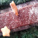 Κορμός Με Gingerbread Cookies